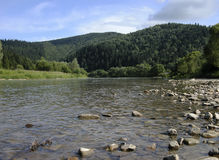 River Strij in Karpatian mountains. Stone riverbank, green forest Royalty Free Stock Photos
