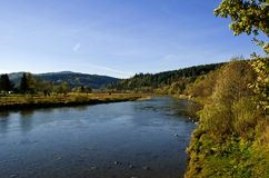 River Stry in Carpathians. Stock Photography