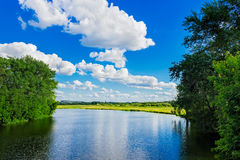 River in summer day Royalty Free Stock Image