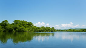 River summer landscape with bright blue sky and clouds Royalty Free Stock Photo