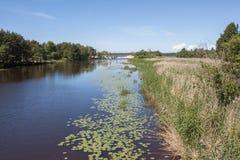 River summer landscape Royalty Free Stock Image
