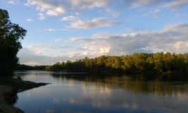 River in summer Stock Photography
