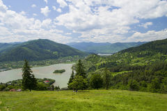 River and summer nature. On Bistrita Valley Royalty Free Stock Image
