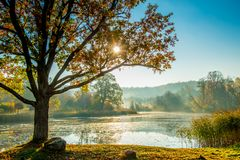 River at sunrise, misty fall morning stock photo