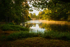 River in sunrise Royalty Free Stock Images