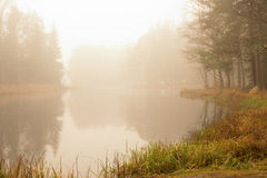 River in sunrise Royalty Free Stock Photo