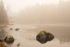 River in sunrise Stock Image