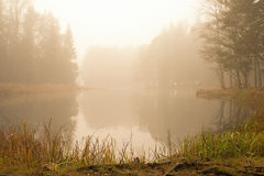 River in sunrise Royalty Free Stock Photography