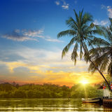 River,  sunrise and tropical palms Stock Image