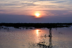 River sunset in Cambodia during summer.  Royalty Free Stock Images