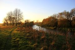 River in the sunset light. Royalty Free Stock Photos