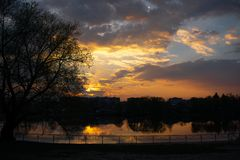 Sunset on the riverside with tree royalty free stock photography
