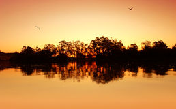River Sunset Ripples Royalty Free Stock Photos