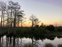 river at sunset in the swamp royalty free stock photo