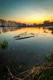 River at sunset vertical. River in Gorzow Wielkopolski, Poland at sunset vertical photography. Beautiful landscape Royalty Free Stock Photo