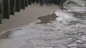 River surf. On the bank of the river Thames, London UK stock video