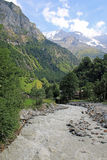 River surrounded by mountains and meadows in Switzerland Royalty Free Stock Photos