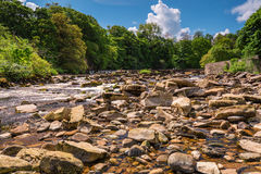 River Swale below Richmond Falls Royalty Free Stock Photo