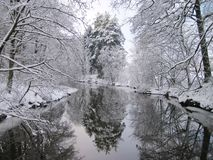River and snowy winter trees, Lithuania Stock Photo