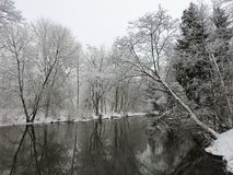 River Sysa and snowy trees in winter, Lithuania Royalty Free Stock Photography