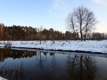 River Sysa and trees in winter in sunset time, Lithuania Royalty Free Stock Images