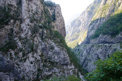 River Tara canyon, Montenegro. River Tara with it`s beautiful green water running trough green Tara Canyon one of the world deepest Canyons and UNESCO World Stock Images