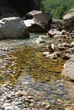 River Tara in Monte Negro. Nice river Tara in Monte Negro in Durmitor national park Stock Image