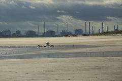 River Tees Estuary Stock Photography