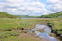 River Teifi, Wales Stock Photos