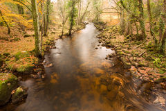 River Teign Stock Photography