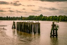 River Thames, in Fulham. View of river Thames, from Thames path, somewhere between Hammersmith and Fulham. London, England, September 2018 royalty free stock photos