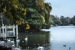 River Thames. Windsor, Berkshire, England, UK stock images