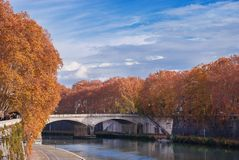 River Tiber in autumn. Autumn leaves along River Tiber in Rome royalty free stock photo
