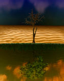 The river of time Royalty Free Stock Photo