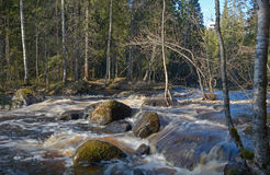 The River Tohmajoki. Waterfalls on the Tohmajoki River, Karilia Royalty Free Stock Images
