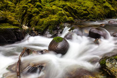 River in Tollymore Forest Park. With motion blur, Newcastle, Co. Down, Northern Ireland stock images