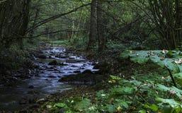 River Toplica,  Croatia Royalty Free Stock Photo