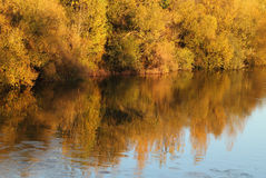 The River Tormes, Salamanca, Spain. Royalty Free Stock Images