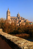 The River Tormes, Salamanca, Spain. Salamanca, Spain. The historical university city and the Cathedral viewed from the Roman Bridge over the Tormes River in the stock photo