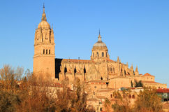 The River Tormes, Salamanca, Spain. Salamanca, Spain. The historical university city and the Cathedral viewed from the Roman Bridge over the Tormes River in the royalty free stock photo