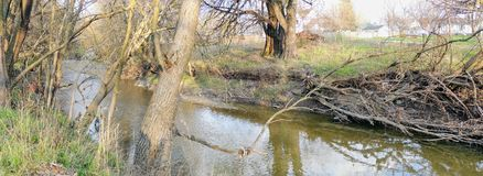 River, tree and park views around Bean Creek Garfield Park in Indianapolis Indiana Royalty Free Stock Photography