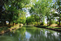 River between trees Royalty Free Stock Photo