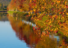 River and trees in autumn Royalty Free Stock Photography