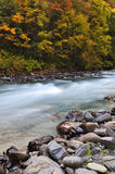 River with trees in autumn Royalty Free Stock Photography