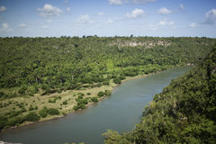 River and trees. Chavon River , near la Romana, Dominican Republic Royalty Free Stock Photos