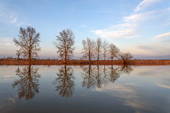 River trees clouds reflection Royalty Free Stock Photos