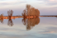 River trees clouds reflection Royalty Free Stock Image