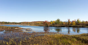 River with trees and fields in fall colors in the Adirondacks. Fall colors along the banks of a river in the Adirondacks in upstate New York Stock Photos