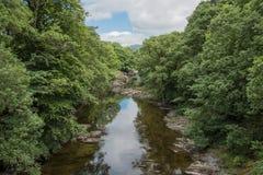 River through trees Stock Photo