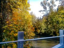 River and trees by new bridge. Silver colored bridge over bright autumn river Stock Photo